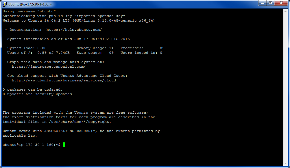 Figure 2.7 The command line interface with the EC2 instance
