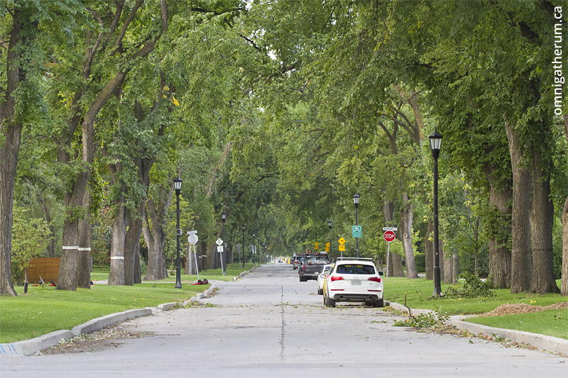 Waverley Street, the longest non-contiguous street in Winnipeg.